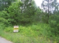 Jerdon Listing L3843 Priest Lakefront Lot