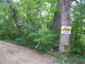 Jerdon Listing S3798 Carter Lakefront Lot